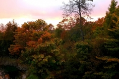 Fall-Colors-Lake-Leelanau-Retreat-House-3-scaled