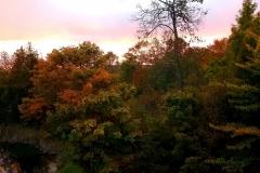 Fall-Colors-Lake-Leelanau-Retreat-House-3-scaled