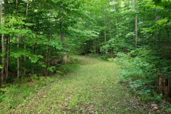 Walking-Trails-2-Lake-Leelanau-Retreat-House