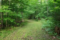 Walking-Trails-2-Lake-Leelanau-Retreat-House